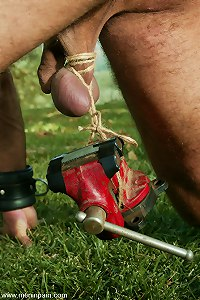 Mistress Harmony Rose puts his balls in a vise
